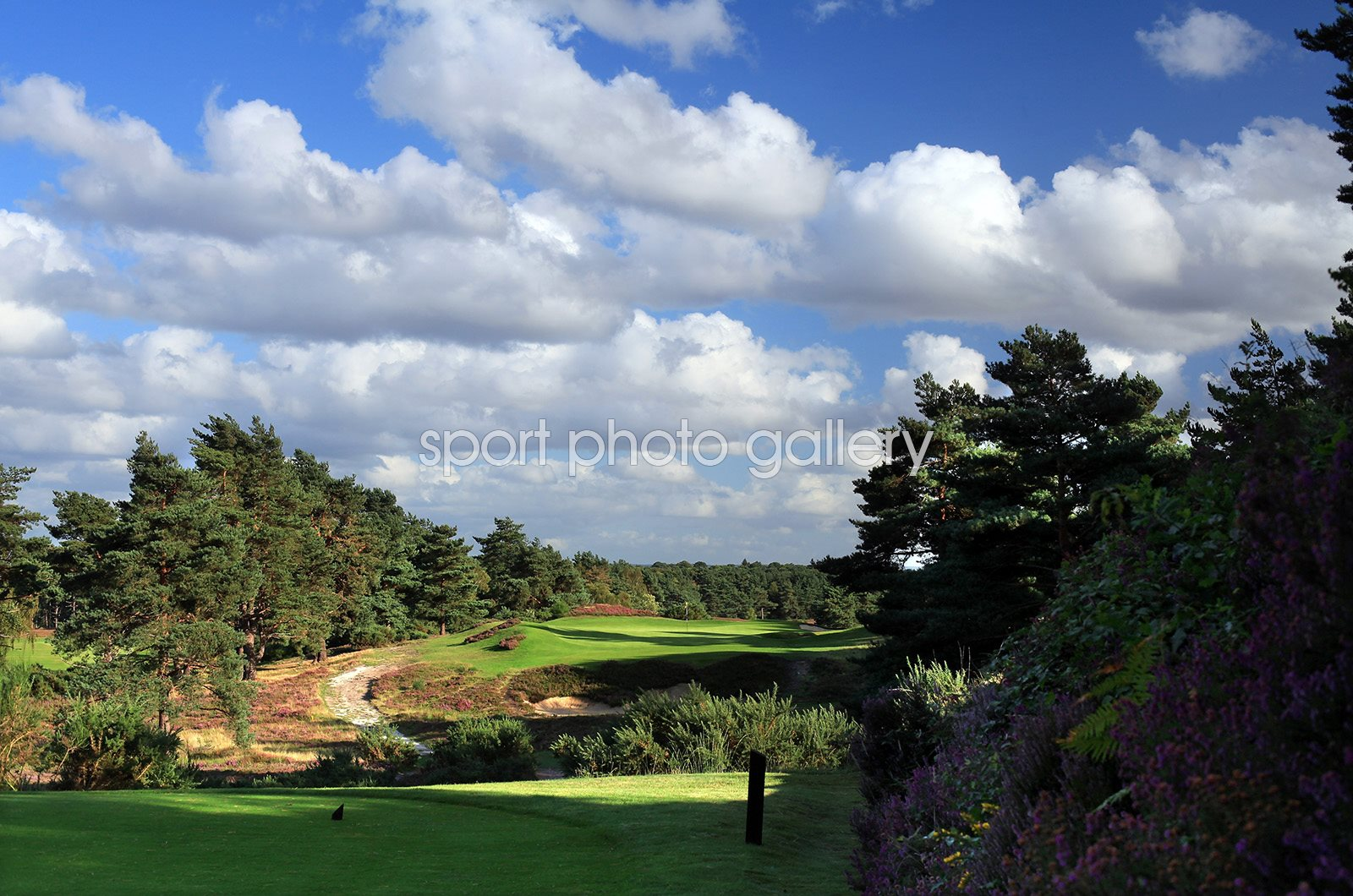 Sunningdale Golf Club New Course