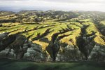 Cape Kidnappers Aerial View Hawkes Bay New Zealand Prints