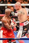 Miguel Cotto v Floyd Mayweather Jr. 2012 Prints