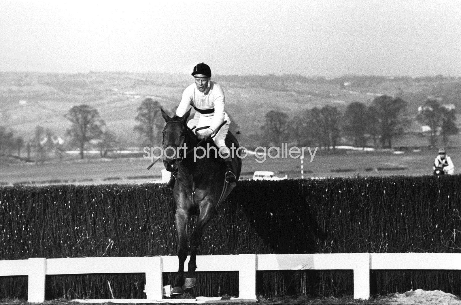 Arkle and Pat Taaffe win Cheltenham Gold Cup 1965