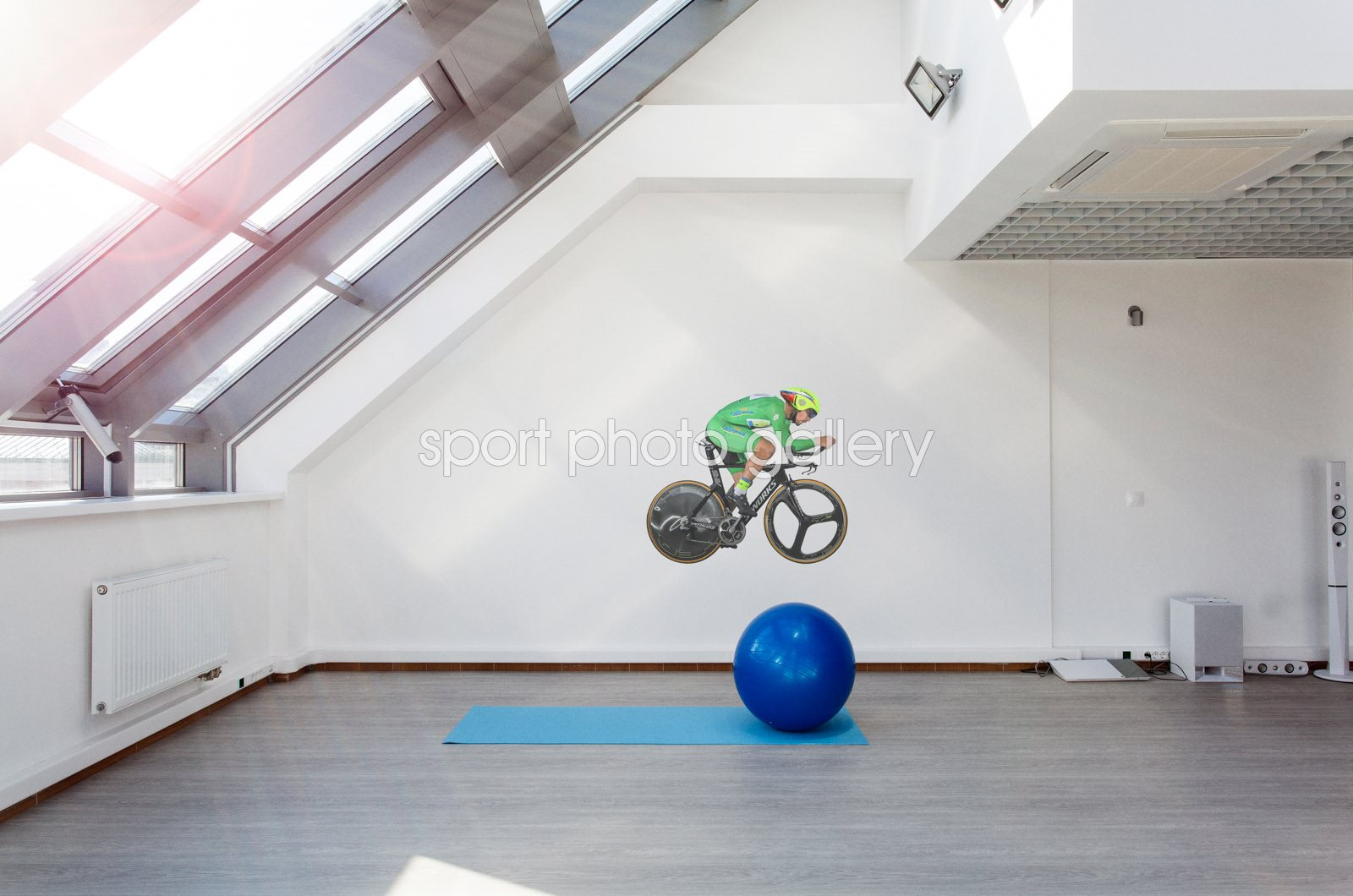 Peter Sagan time trail lifesize wall sticker