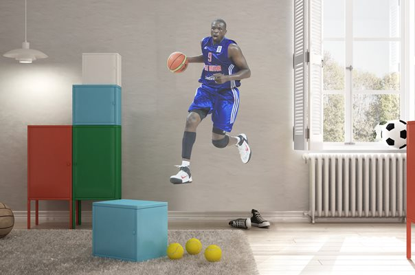 Luol Deng Wall Sticker