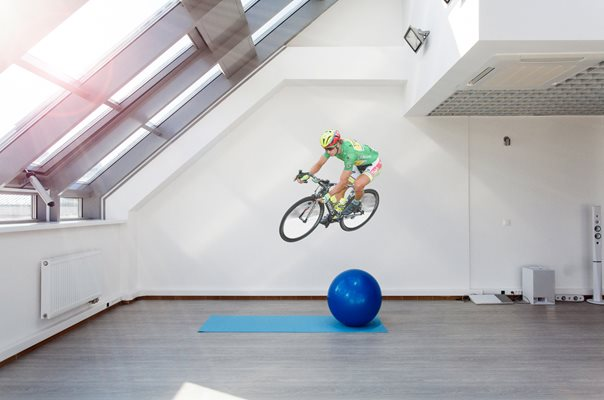 Peter Sagan lifesize wall sticker