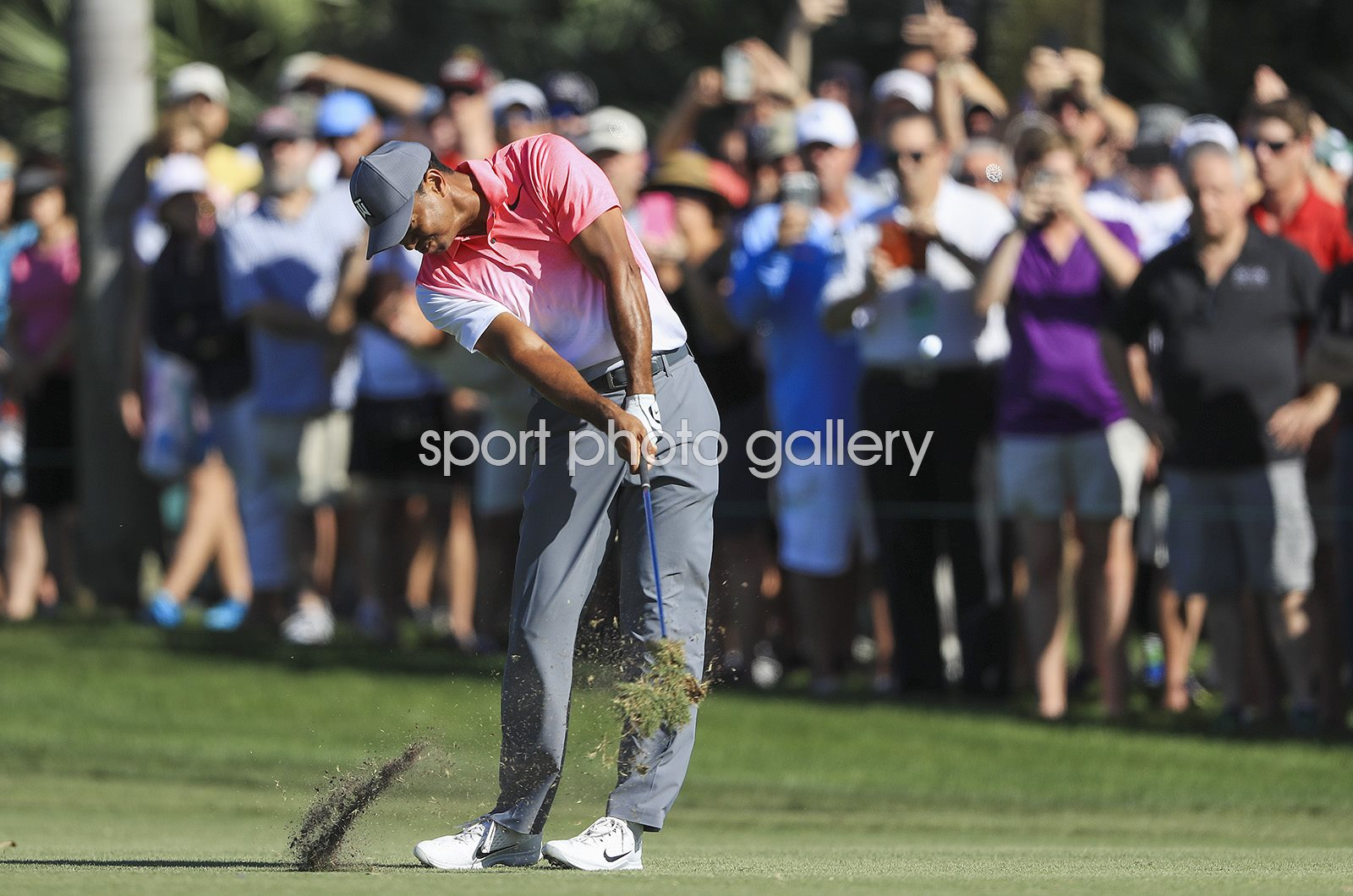Tiger Woods Honda Classic PGA National Florida 2018