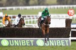 Ruby Walsh & Footpad Arkle Novices Chase Cheltenham 2018 Prints