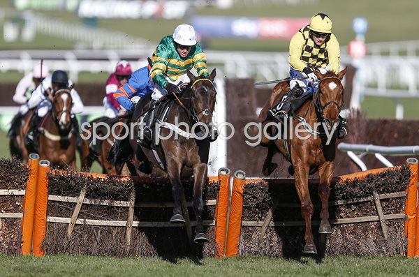 Barry Geraghty & Buveur D'Air Champion Hurdle Cheltenham 2018