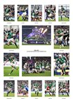 Ireland 6 Nations Grand Slam Team Special 2018 Prints