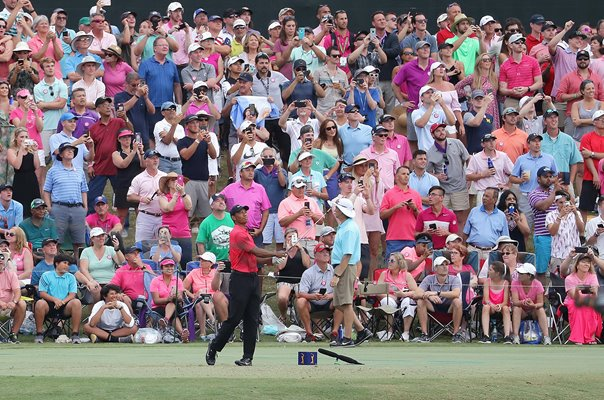 Tiger Woods 17th Hole Players Championship TPC Sawgrass 2018