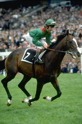 Walter Swinburn & Shergar Royal Ascot 1981