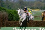 Desert Orchid jumping Whitbread Gold Cup Sandown Park 1988 Prints