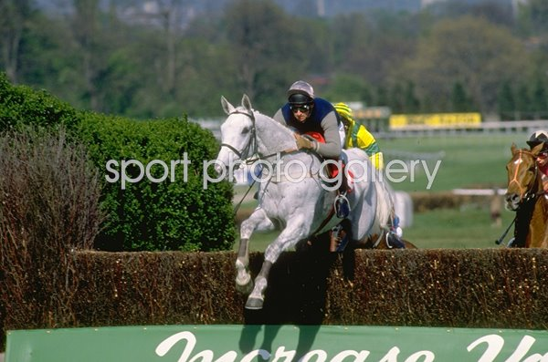 Desert Orchid jumping Whitbread Gold Cup Sandown Park 1988