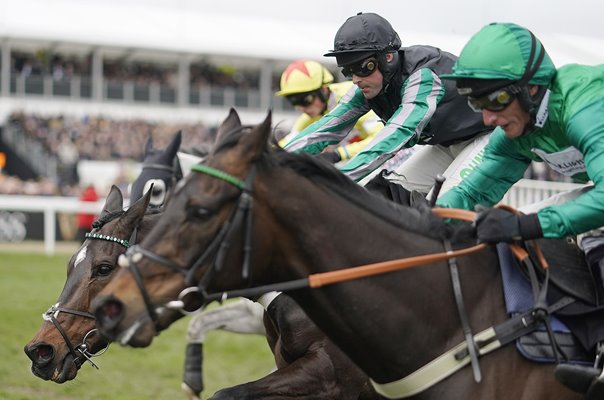 Altior wins Queen Mother Champion Chase Cheltenham 2019