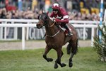 Keith Donoghue & Tiger Roll win Glenfarclas Chase Cheltenham 2019 Mounts