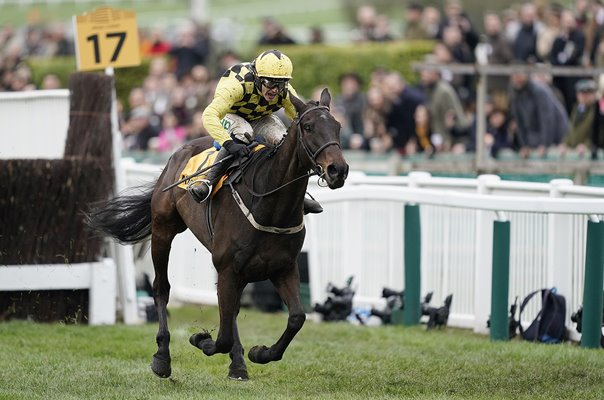 Al Boum Photo & Paul Townend Gold Cup Cheltenham 2019