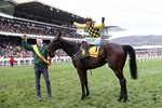 Jockey Paul Townend & Al Boum Photo win Gold Cup Cheltenham 2019 Prints