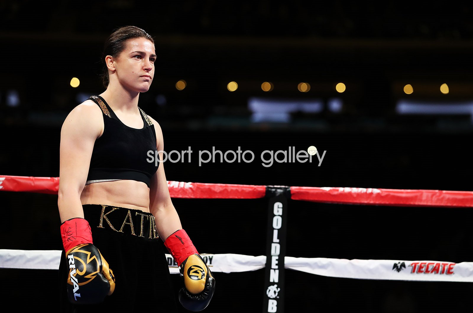 Katie Taylor v Eva Wahlstrom Fight New York 2018