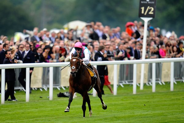 Frankel wins Queen Anne at Royal Ascot 2012