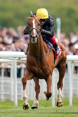 Frankie Dettori riding Stradivarius York Races 2019