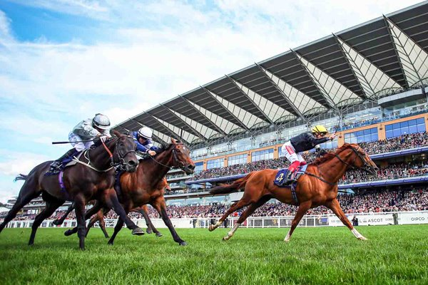 Frankie Dettori riding Stradivarius wins Gold Cup Royal Ascot 2019