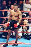 Mike Tyson v Evander Holyfield MGM Grand Las Vegas 1996 Mounts