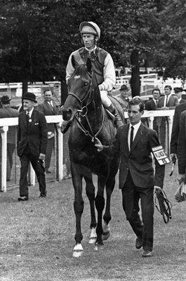 Lester Piggott & Nijinsky Flat Racing Legends