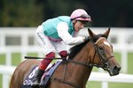 Jockey Frankie Dettori & Enable to King George win Ascot 2019 Canvas