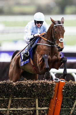 Jockey Rachael Blackmore & Honeysuckle Mares Hurdle Cheltenham 2020