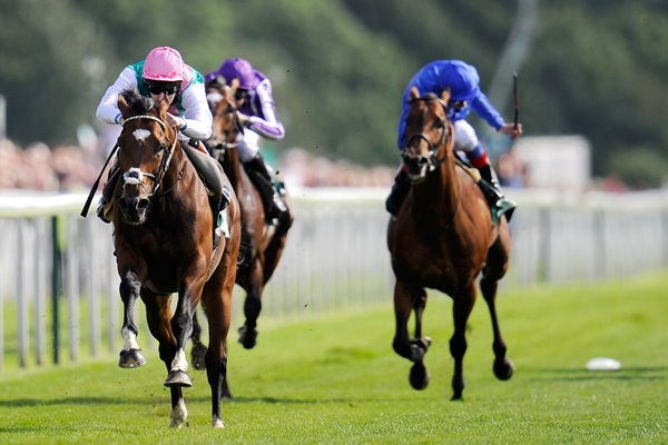 Frankel wins at York Races 2012