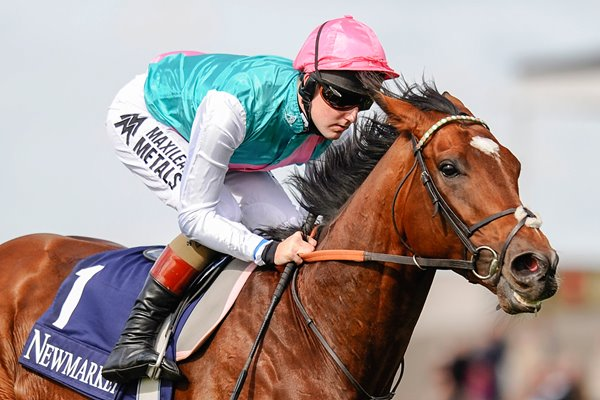 Tom Quelly & Frankel Newmarket 2012