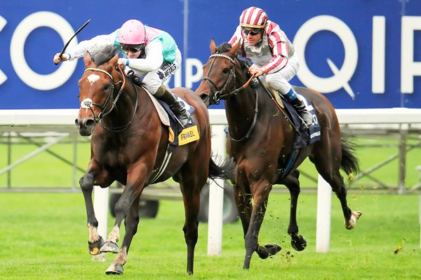 Frankel wins the Champions Stakes at Ascot 2012