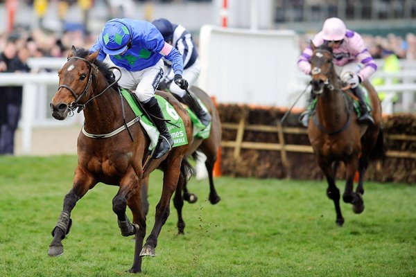 Hurricane Fly & Ruby Walsh win 2013 Champion Hurdle