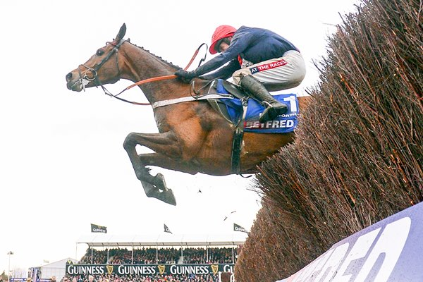 Barry Geraghty & Bobs Worth Cheltenham 2013