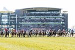 Grand National Start Aintree 2013 Prints