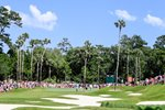 TPC Stadium Course Sawgrass 8th Hole  Prints