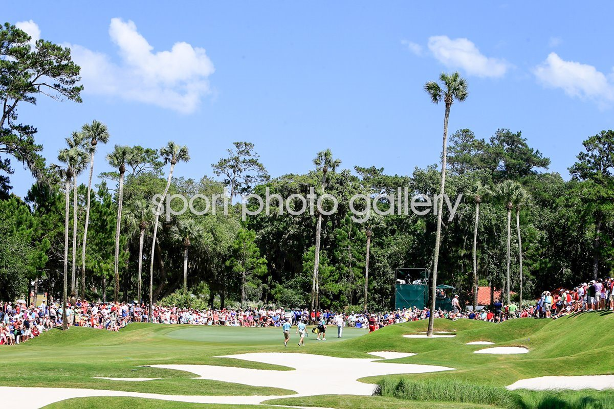 TPC Stadium Course Sawgrass 8th Hole