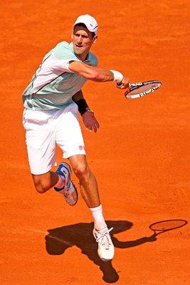 Novak Djokovic Posters, Prints & Canvas 2019   Sport Photo