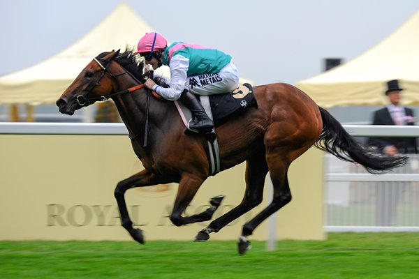 Tom Queally wins on Riposte Royal Ascot 2013