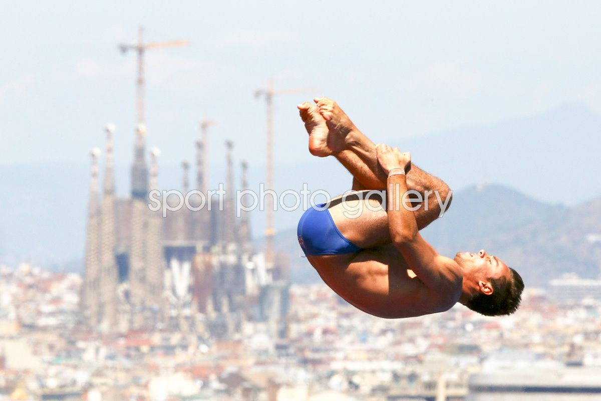 Tom Daley World Championships Barcelona 2013