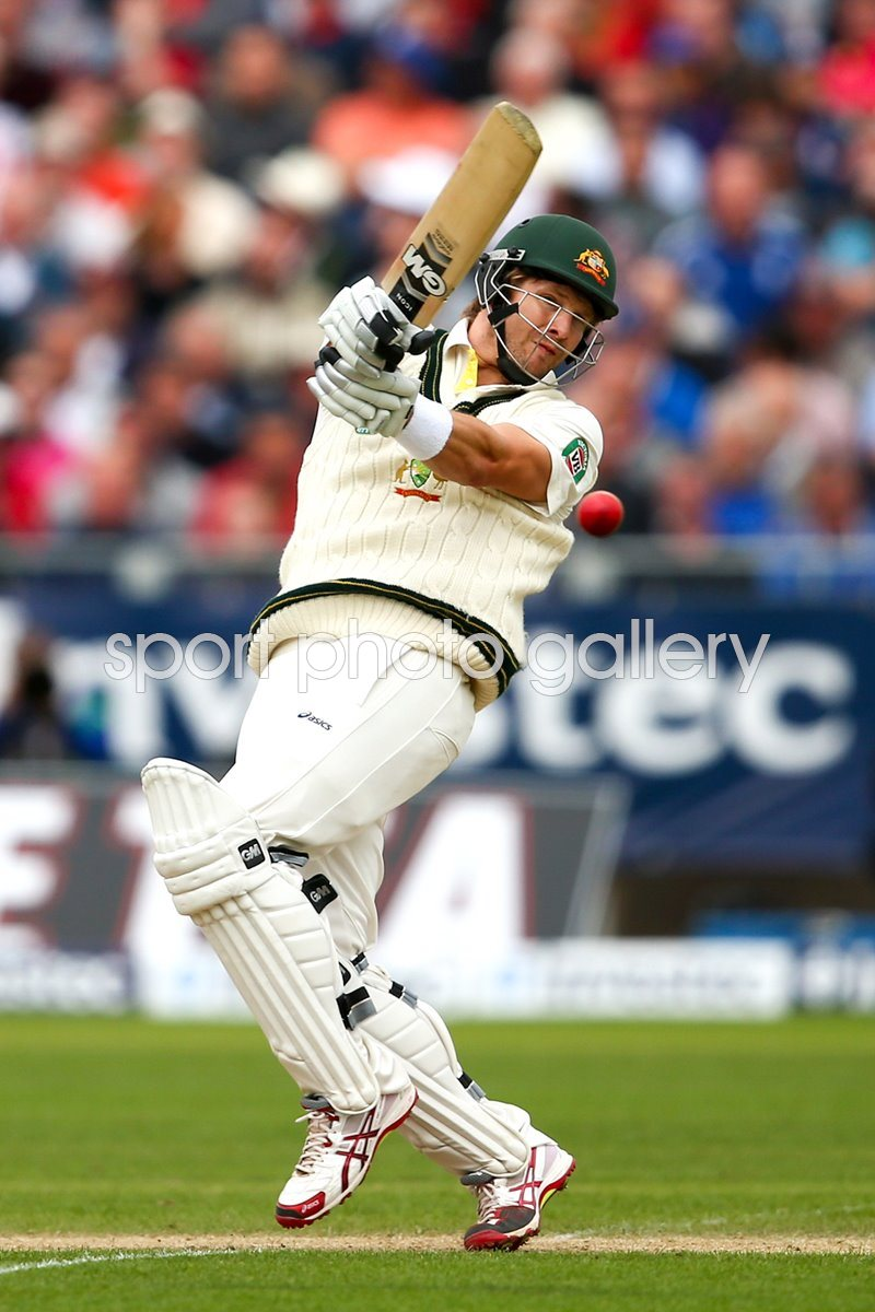 Ashes 2013 Print | Cricket Posters | Shane Watson