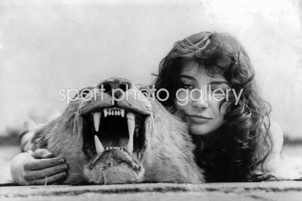 Kate Bush Lion Portrait