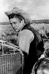 James Dean Mounts
