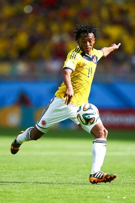 Juan Guillermo Colombia 2014 World Cup