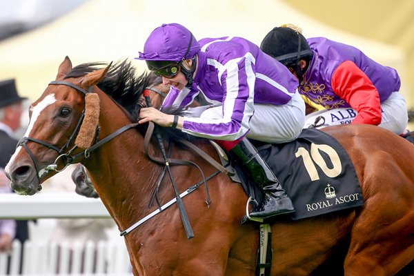 Joseph O'Brien & Leading Light win Gold Cup Royal Ascot 2014
