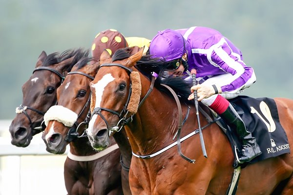 Joseph O'Brien on Leading Light win Gold Cup Royal Ascot 2014