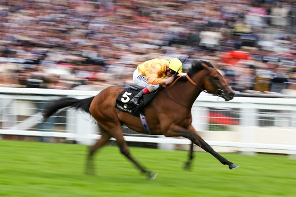 Andrea Atzeni riding Cursory Glance Royal Ascot 2014