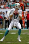 Ryan Tannehill Dolphins Sun Life 2014  Wall Sticker