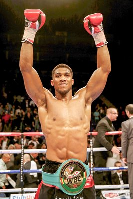 Anthony Joshua WBC International Heavyweight Champion 2014