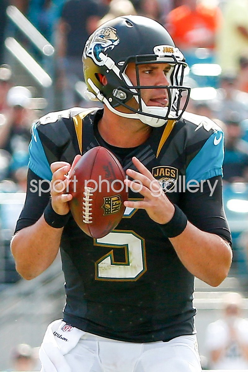 Browns v Jaguars - Blake Bortles 2014