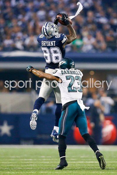 Regular Season 2014 Print American Football Posters Dez