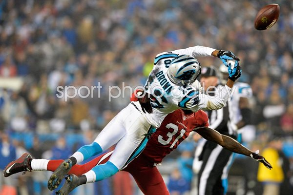 Wild Card Playoffs Antonio Cromartie Cardinals v Panthers